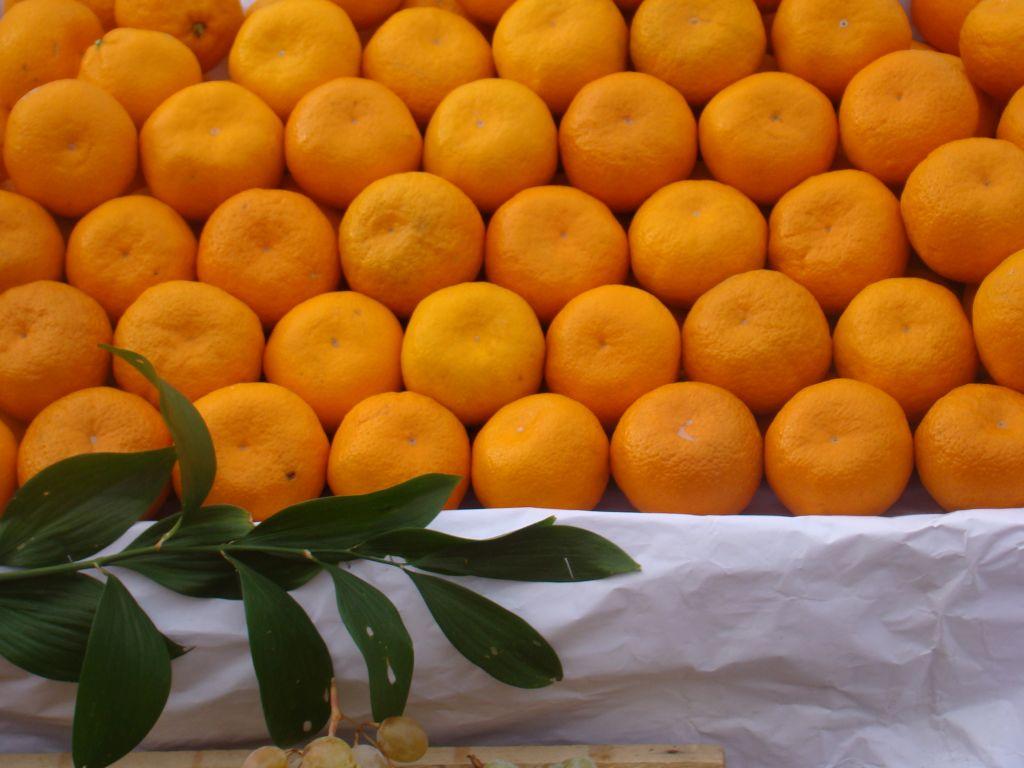 Mandarins at Tbilisi Dezerter market