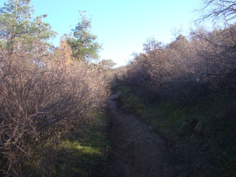 Hiking trails in Tbilisi