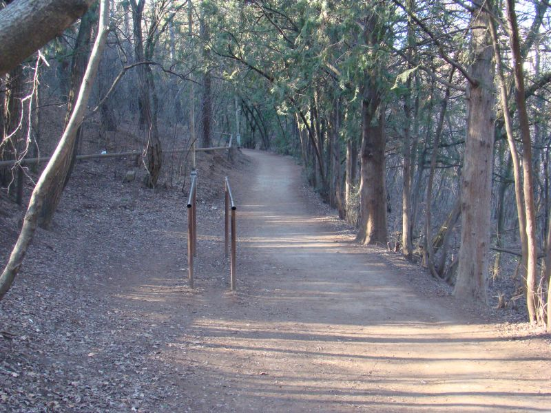 Parallel bars on trails