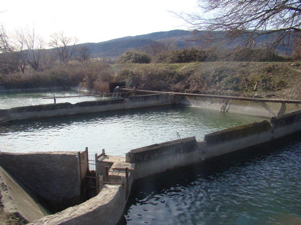 Fish pools near Sagarejo
