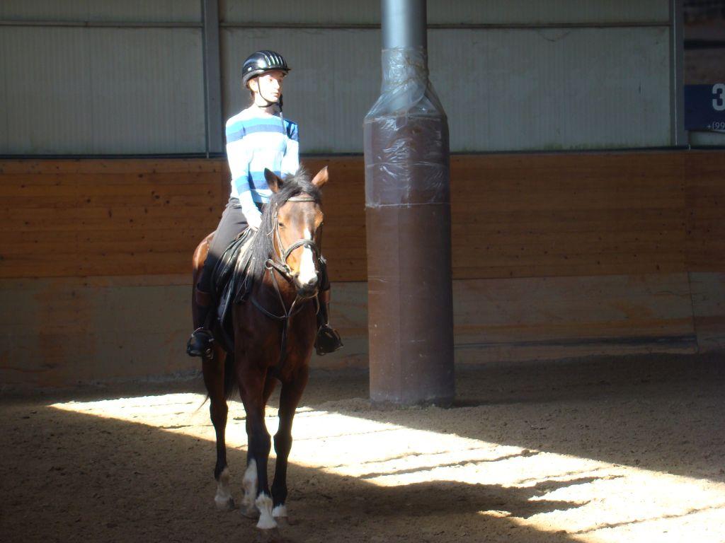 Jockey and a horse at a training ring