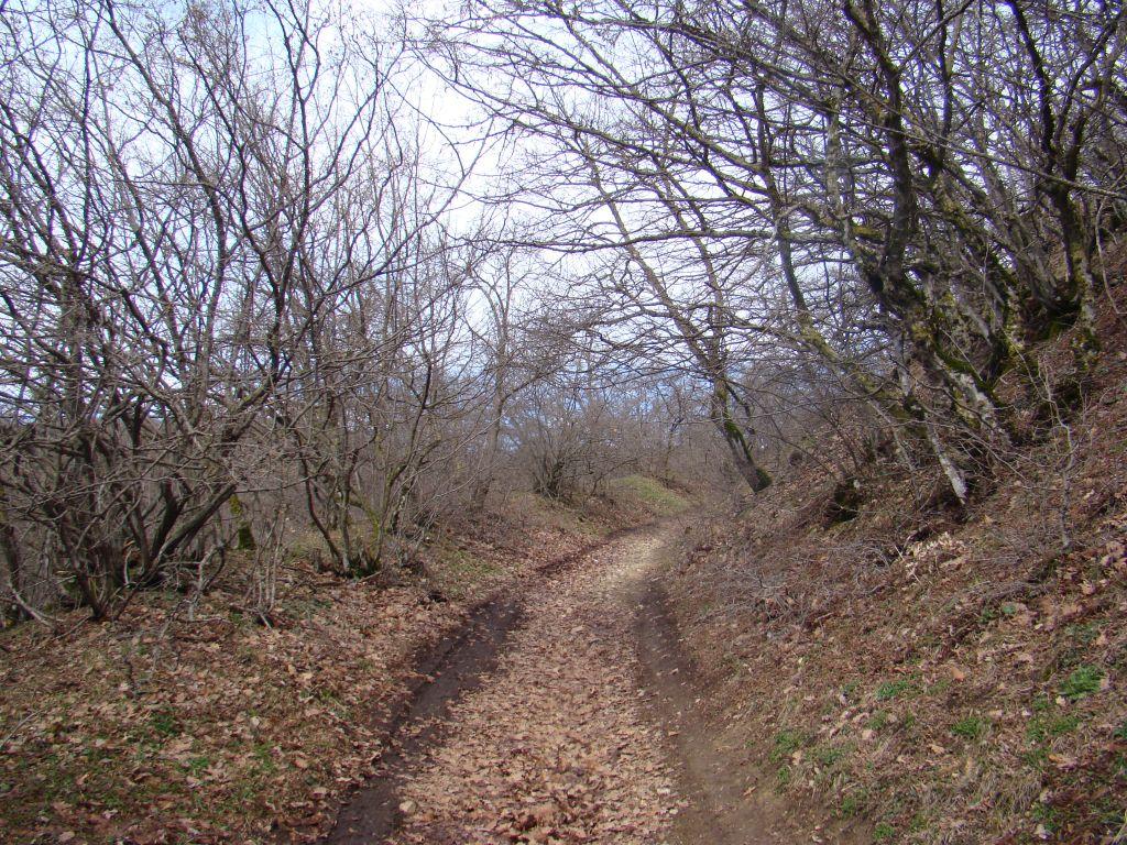 Trail to Birtvisi Canyon