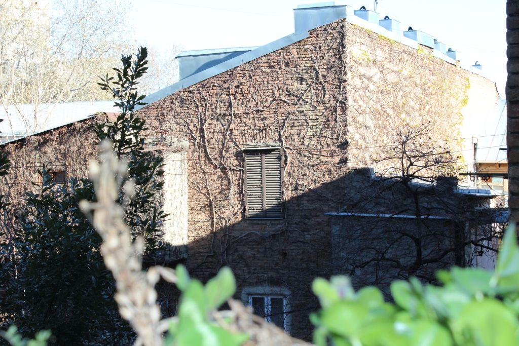 A brick wall in high sun light