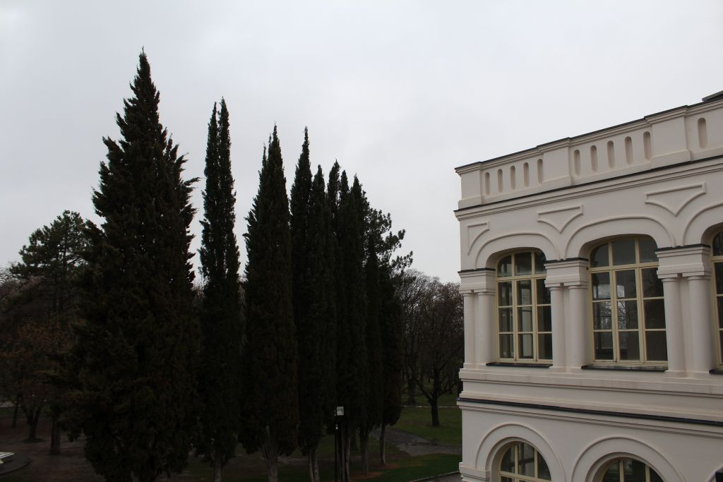 Outdoor terrace at Château Mukhrani