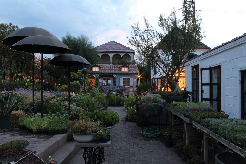 At Gardenia Shevernadze Plant garden