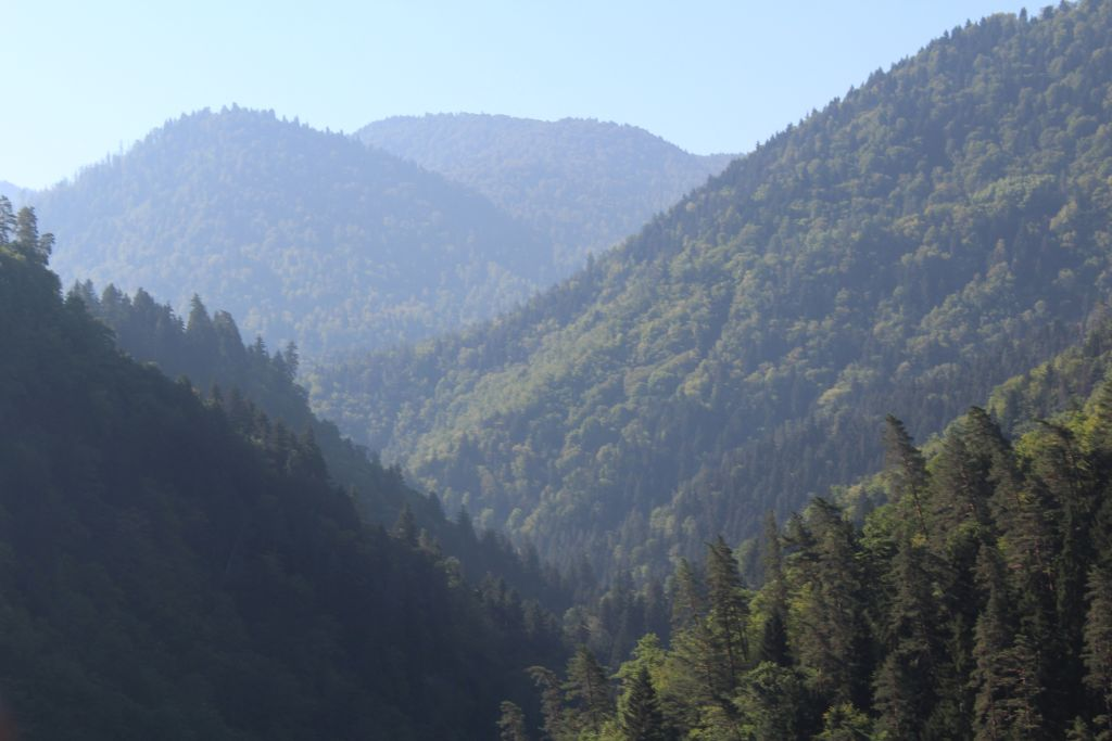 Aerial view to Borjomi gorge from cable car