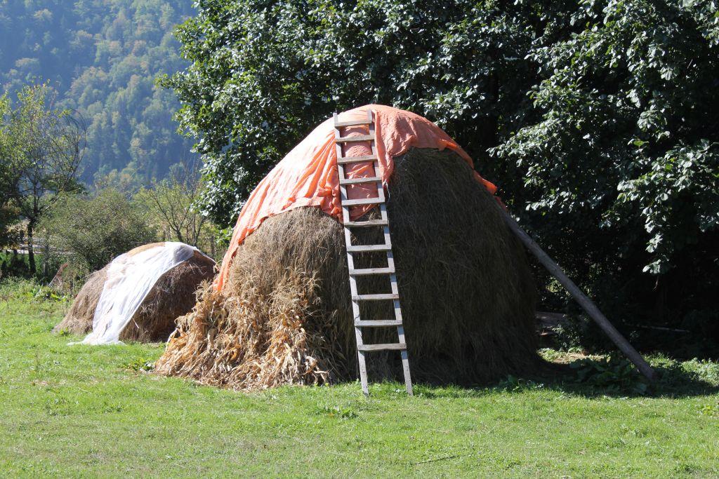 Haystack in Borjomi
