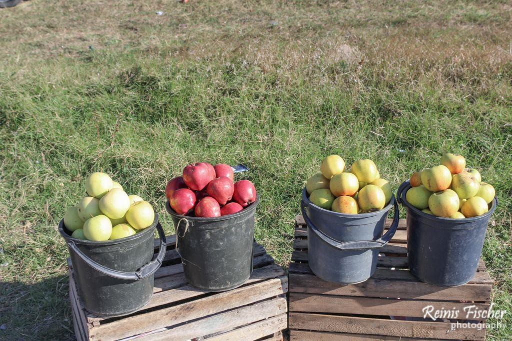 Apples for sale at highway market