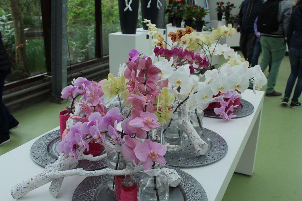 Flowers at Keukenhof's Love Room