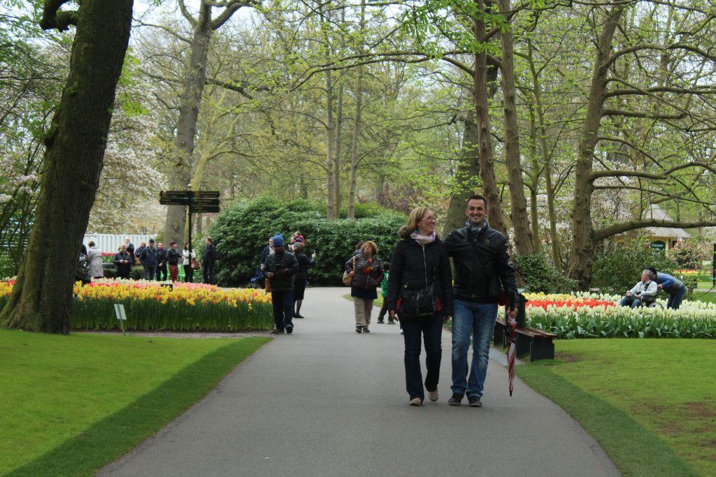 Keukenhof's Park garden