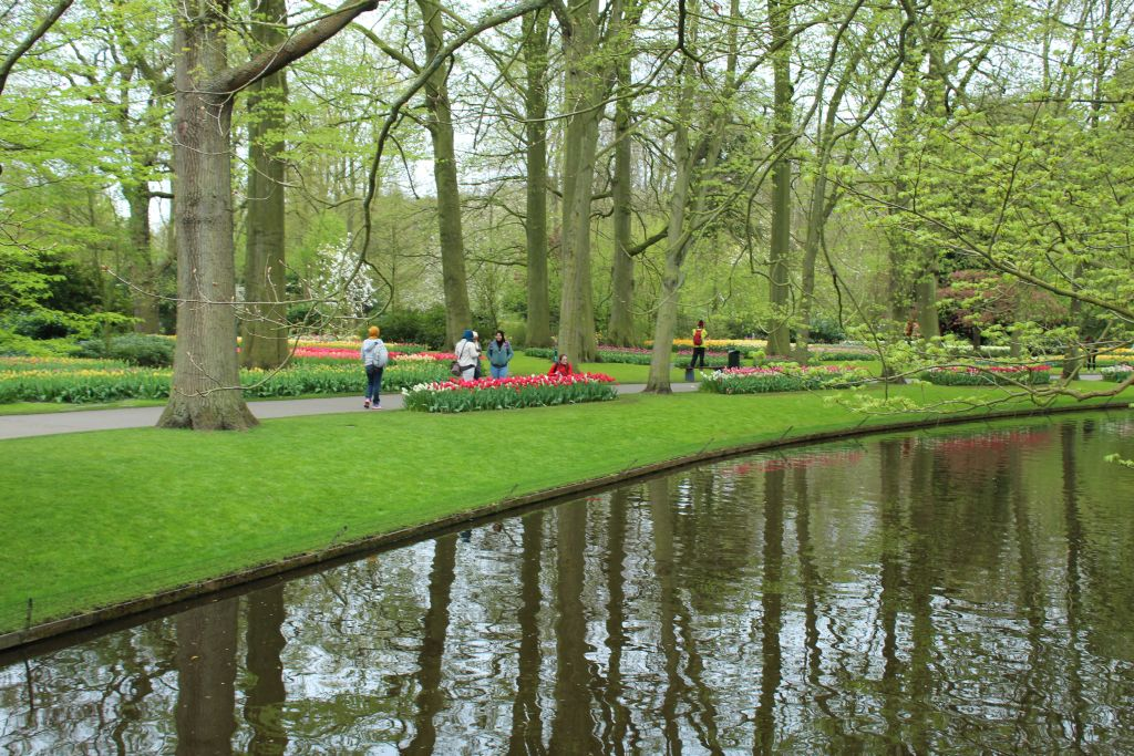 At Keukenhof's park garden