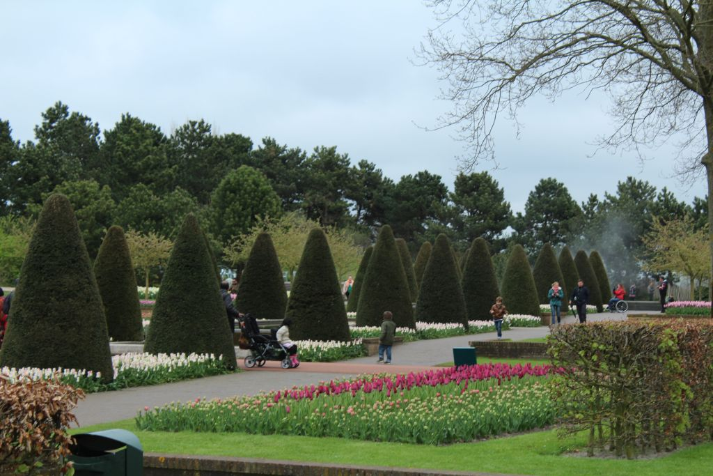 Garden landscape at Keukenhof