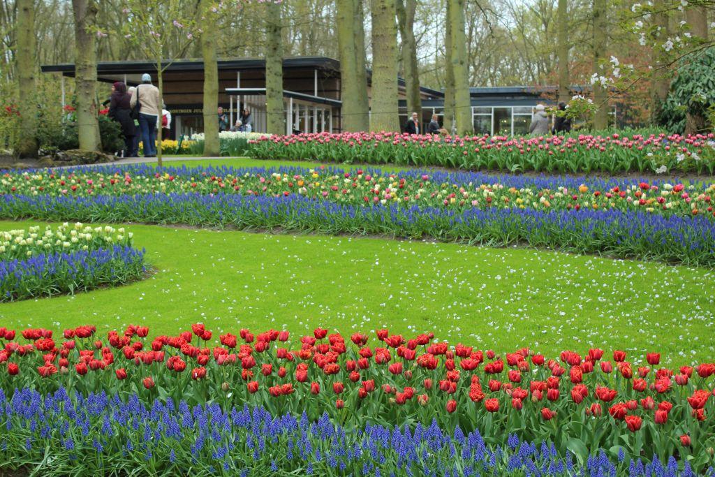 River of Flowers at Keukenhof's garden