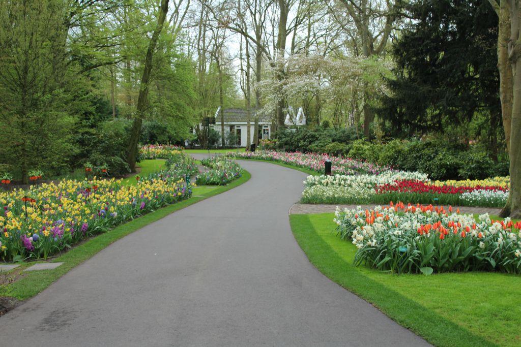 Keukenhof's garden