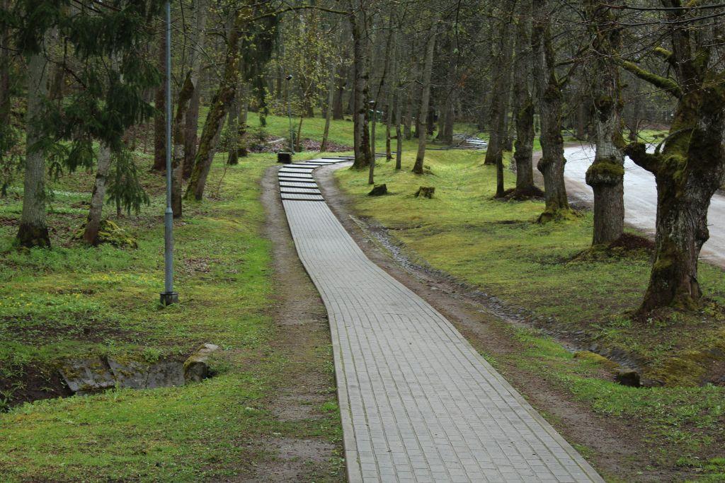 Park close to Kazdanga Mill lake