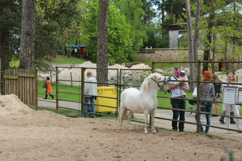 At Riga Zoo