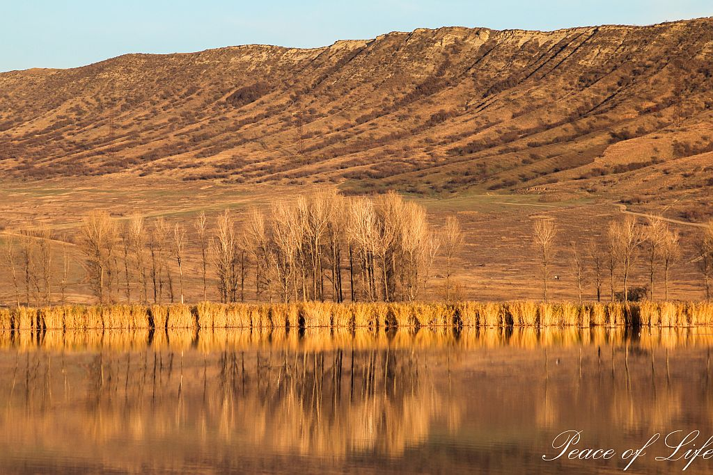 Water reflections on Lisi lake in Tbilisi