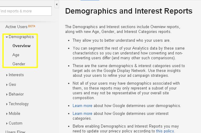 Google Analytics Display Features