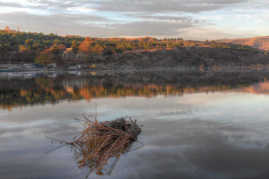Reflections on water (Lisi lake, Tbilisi)